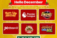 Photo of Five exciting local shows you must watch this December on GOtv